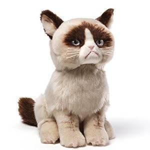 th_grumpy-cat-2