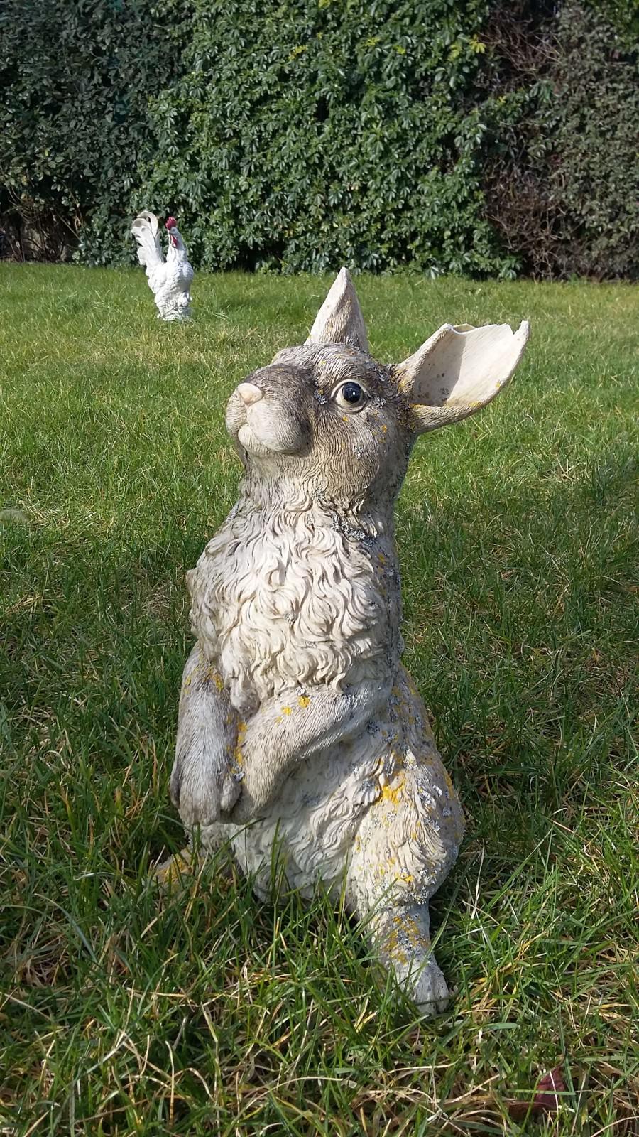 Bunny-Day