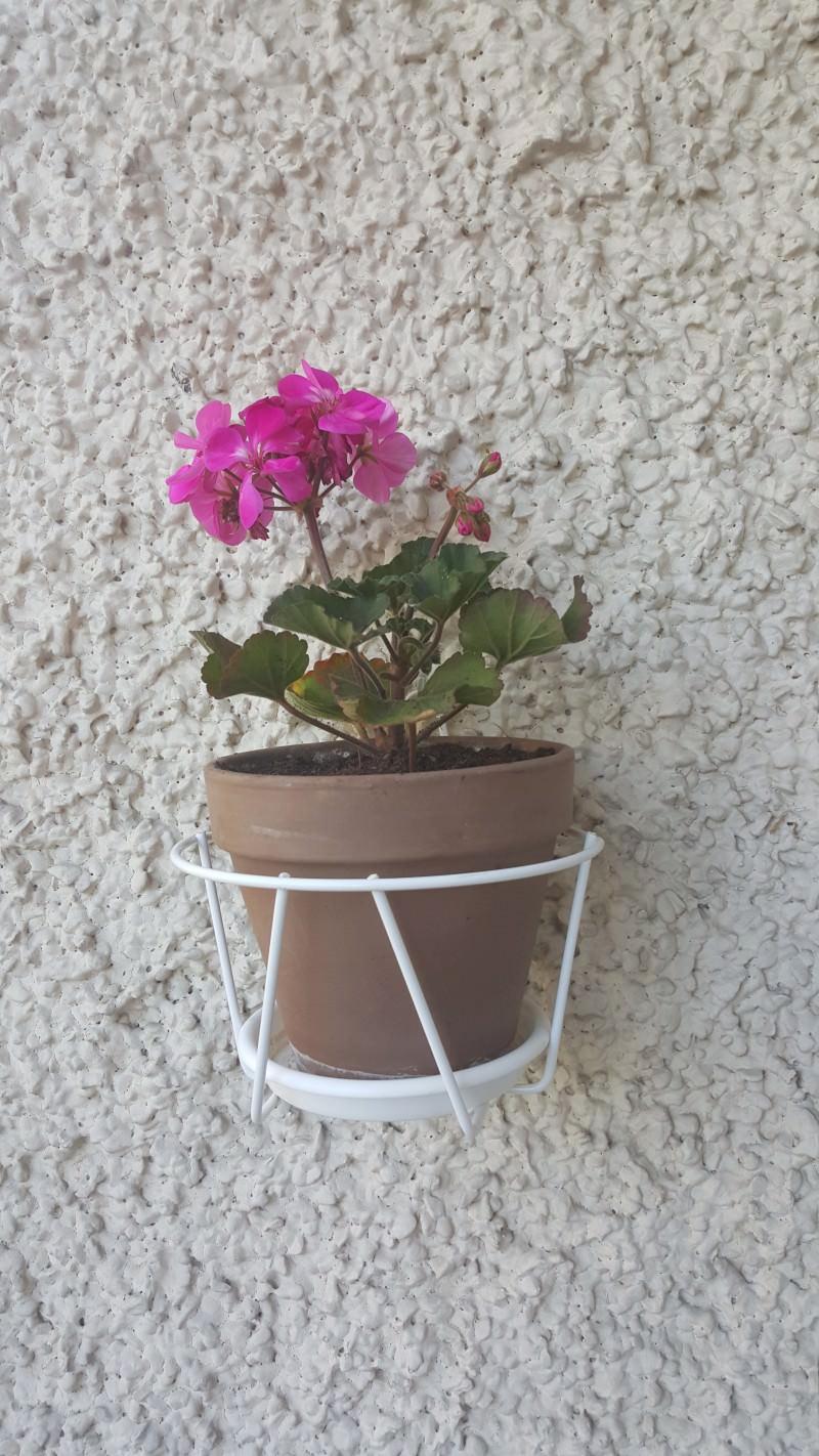 Flower-S6Edge