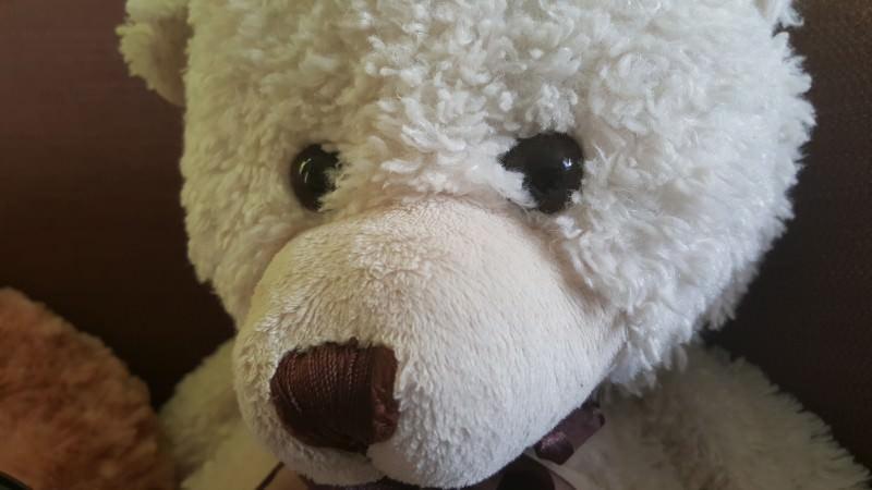 S6Edge-Bear