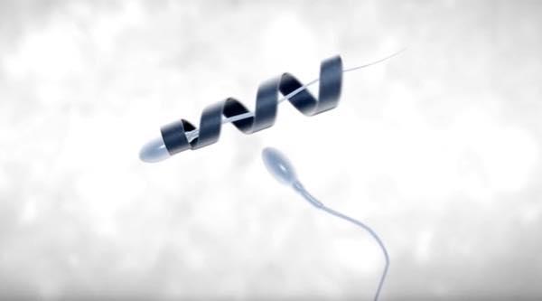 spermbot 1