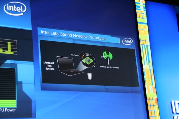 Intel Spring Meadow
