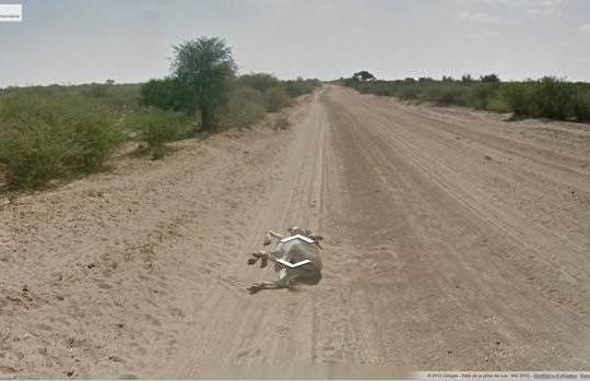Ane Google Street View