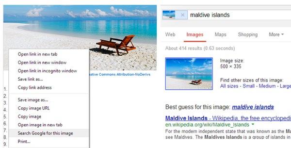 Google 30 Recherche Image Rapide