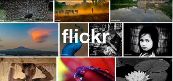 Flickr Photos