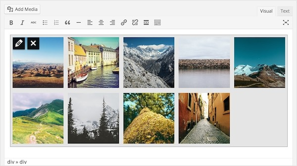 gallery wp 3.9