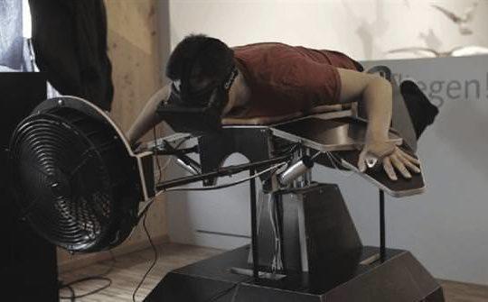 Oculus-flylikeabird
