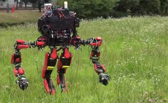 th_schaft-robot-in-a-field