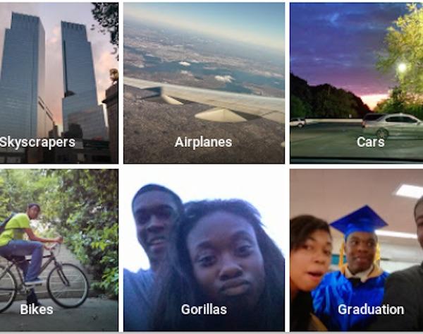 Google Photos Gorilles Personnes Noires