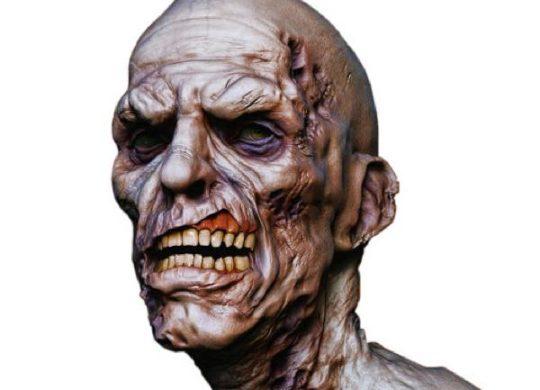 transformer-zombie-the-walking-dead