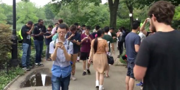 Pokemon-go-central-park-930x465
