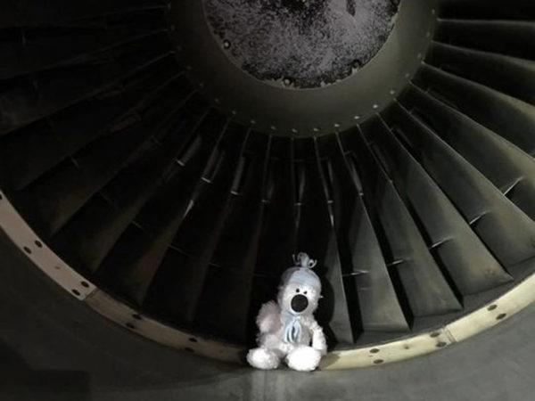 636180341055447342-teddy-plane-2