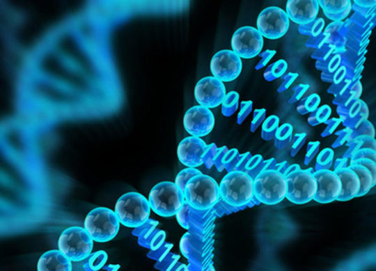 disque dur ADN