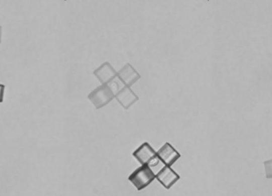CELLULES MICROBOTS