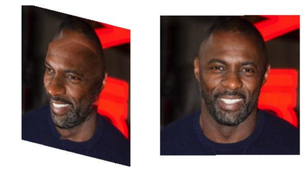 Facial 2D 3D 600x337
