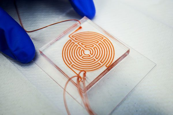 Labyrinth Chip Could Help Monitor Aggressive Cancer Stem Cells Orig2 20170921 600x400