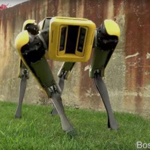 Image article SpotMini : le robot-chien peut désormais être programmé avec un SDK Open Source