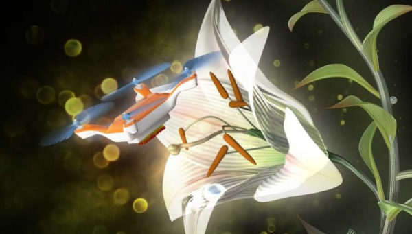 Drone Pollinisateur 600x341
