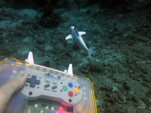 2SoFi Swimming With Close Up Of Remote Control 600x450
