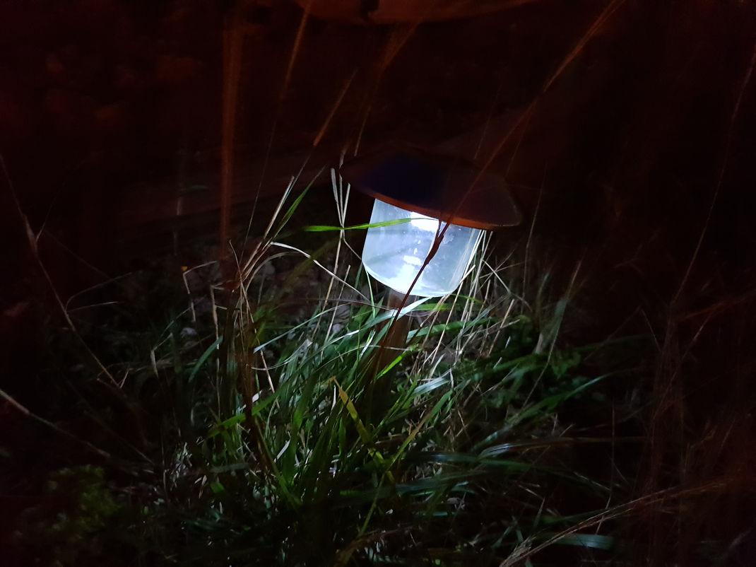 Photo De Nuit S9