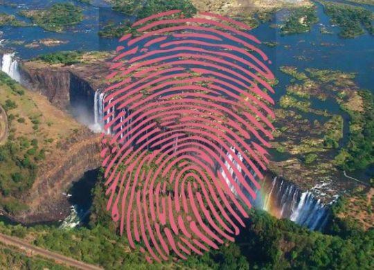 zimbabwe digital