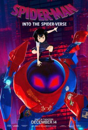 Into The Spider Verse Affiche 5 303x450