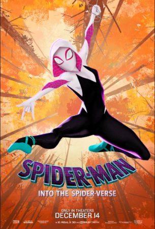 Into The Spider Verse Affiche 6.jpg 305x450