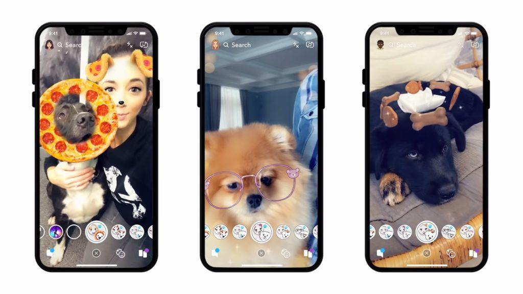 Snapchat Filtres Pour Chiens 1024x576