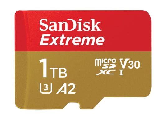 SanDisk Carte MicroSD 1 To