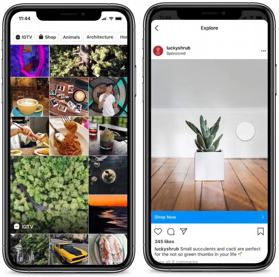 Instagram Explorer Publicites