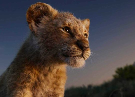 Le Roi Lion 2019 Simba
