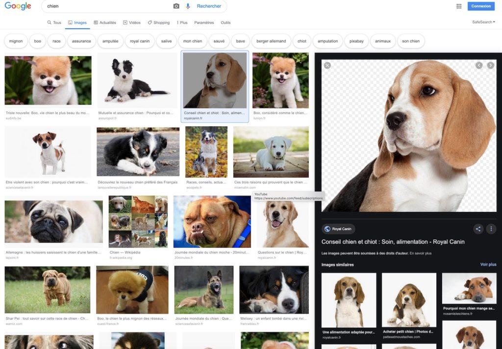 Google Images Panneau Lateral 1024x713