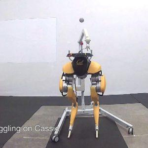 Image article Le robot bipède Cassie Cal sait faire des jongles avec une balle (vidéo)
