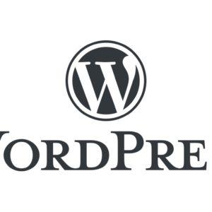Image article WordPress 5.5 est disponible : voici les nouveautés