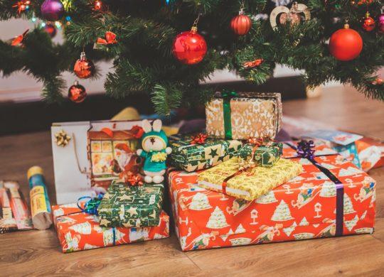 Cadeaux Noel Sapin