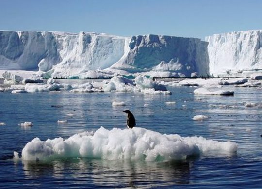 Crise climatique