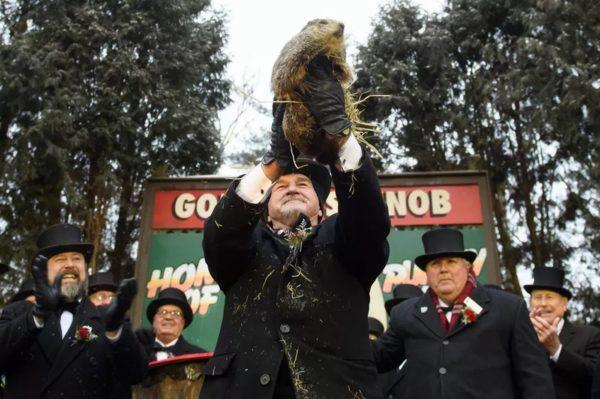Jour De La Marmotte 600x399