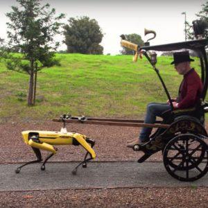 Image article L'ex-présentateur Adam Savage se fait tracter par le robot Spot (vidéo)