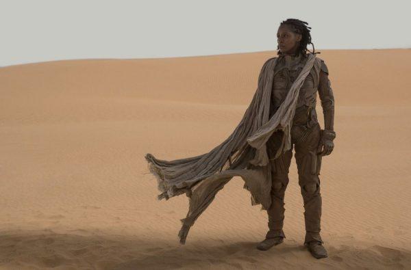 Dune Film Image 6 600x395