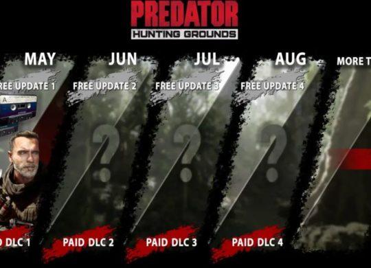 predator schwarzy