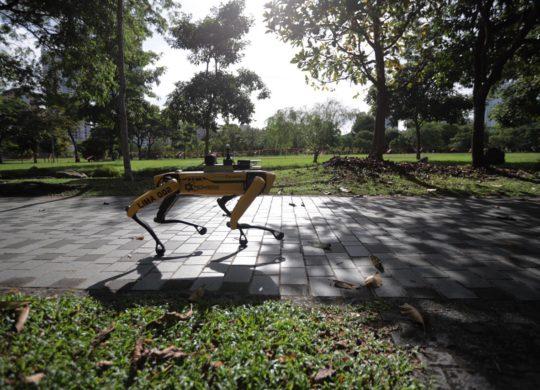robot singapour