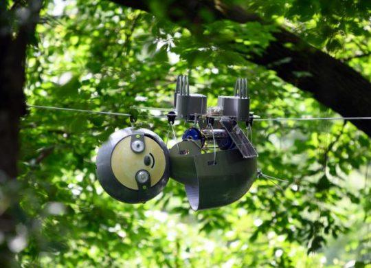 slothbot-16
