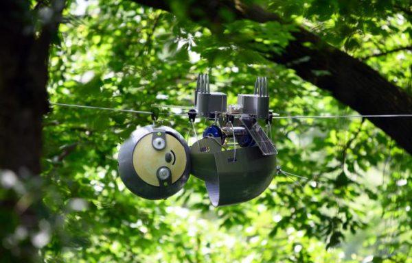 Slothbot 16 600x384