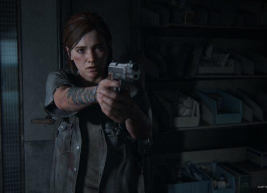 The Last of Us Part 2 Ellie Arme