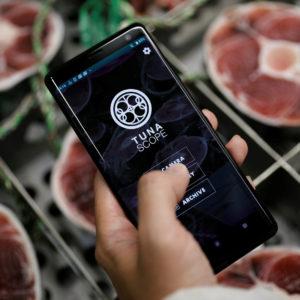 Image article Japon : une application utilise l'IA pour juger la qualité des poissons attrapés