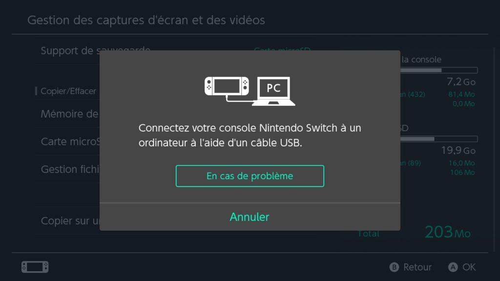 Nintendo Switch Transfert USB