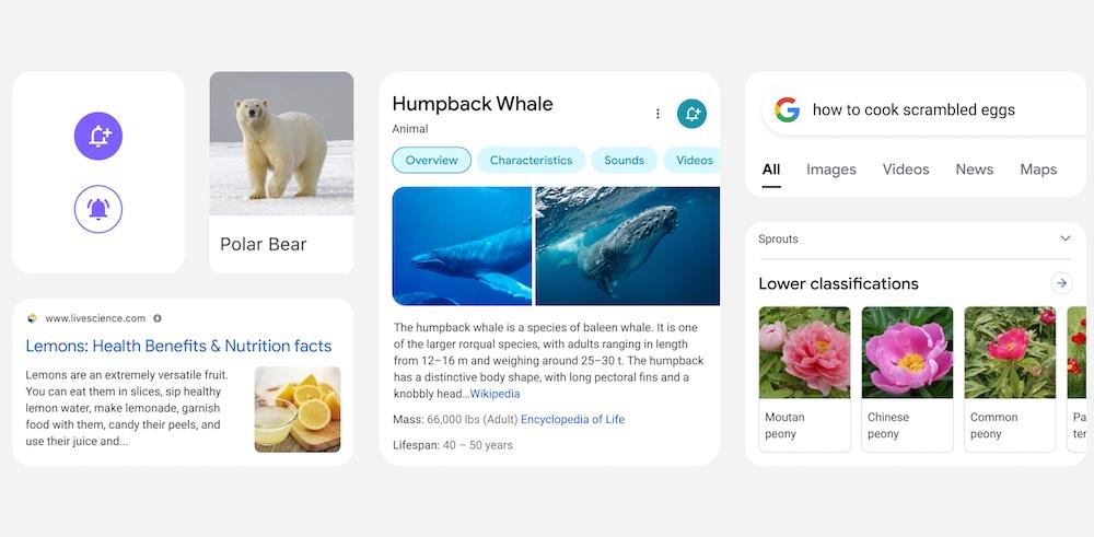 Hero nouvelle interface recherche google