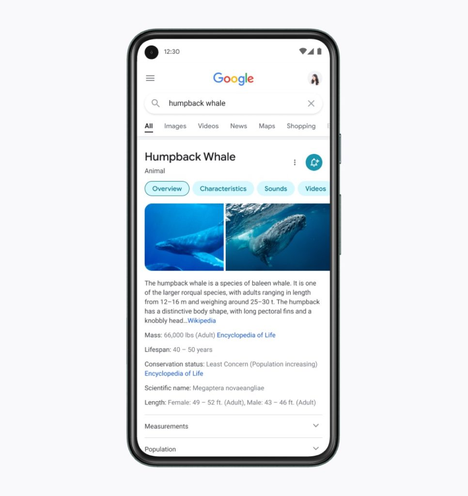 New Google Search Interface Mobile View 966x1024