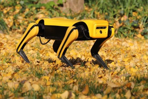 robot-chien chinois