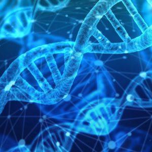 Image article Codex ADS : Les fichiers binaires numériques peuvent désormais être convertis en alphabet génétique